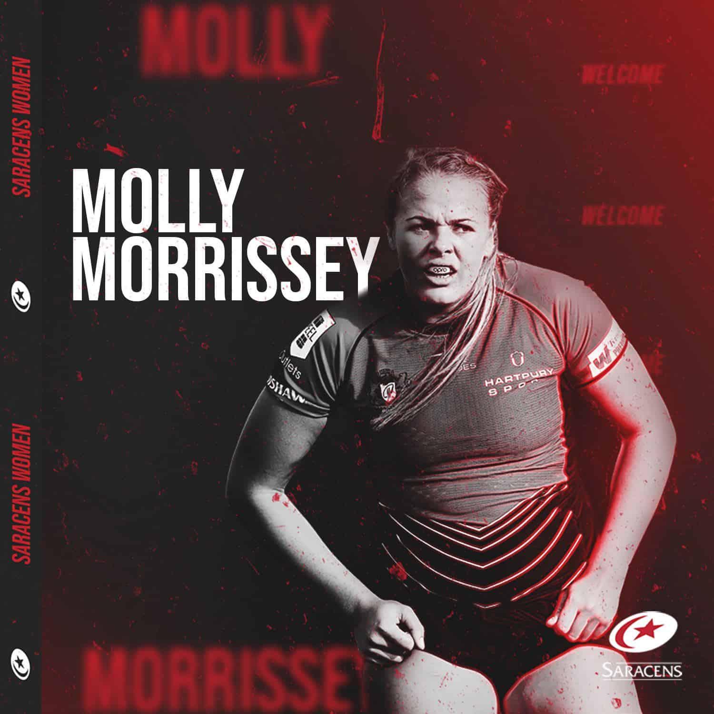 Molly-1500x1500